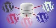 Mysql database backup and restore php script